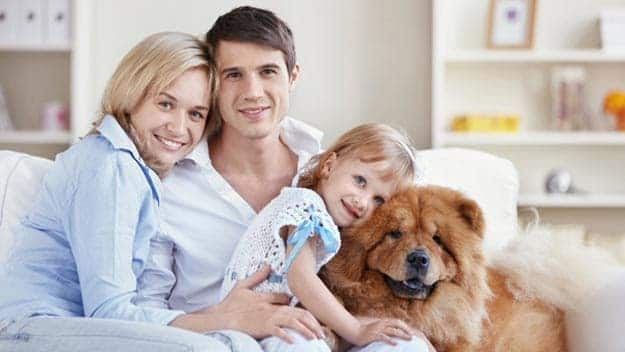 Wills & Trusts dog-young-family Direct Wills Salford Priors